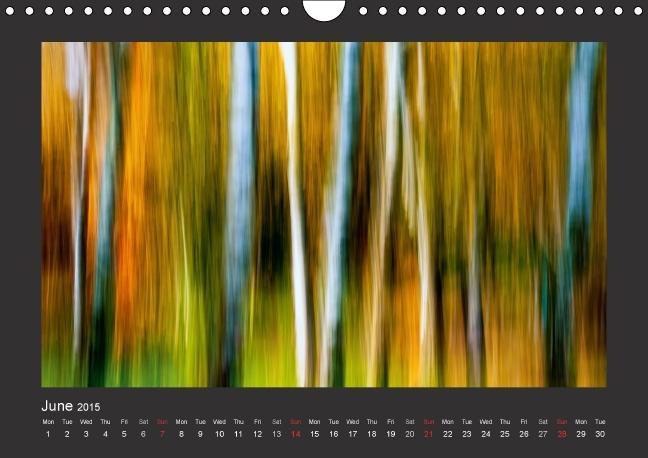 Art in Nature / UK-Version (Wall Calendar 2015 DIN A4 Landscape) - zum Schließen ins Bild klicken