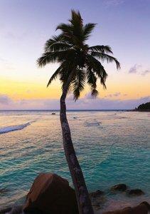 Inselglück auf den Seychellen (Tischaufsteller DIN A5 hoch)