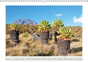 Entdeckungen am Kilimandscharo (Wandkalender 2016 DIN A3 quer)