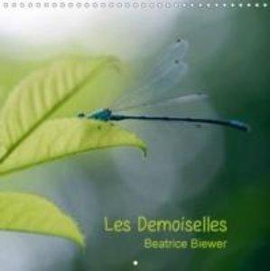 Les Demoiselles (Calendrier mural 2015 300 × 300 mm Square)