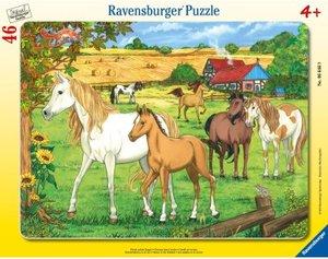Pferde auf der Koppel. Rahmenpuzzle 46 Teile