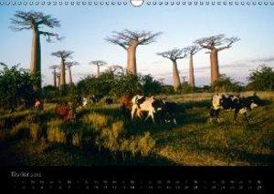 Madagascar rêvée (Calendrier mural 2015 DIN A3 horizontal)