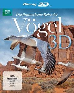 Die Fantastische Reise Der Vögel-3D