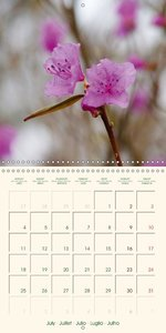 Spring Begins (Wall Calendar 2016 300 × 300 mm Square)