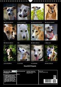 Beautiful Whippets (Wall Calendar 2015 DIN A3 Portrait)