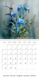Dessins de Fleurs d'Iris (Calendrier mural 2016 300 × 300 mm Squ