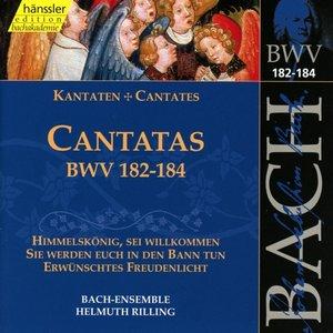 Kantaten BWV 182-184
