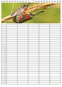 Die Welt der Krabbeltiere: Insekten und Spinnen / Familienplaner