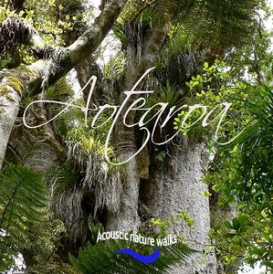 Aotearoa. Acoustic nature walks