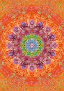 Mandala Energy (Poster Book DIN A3 Portrait)