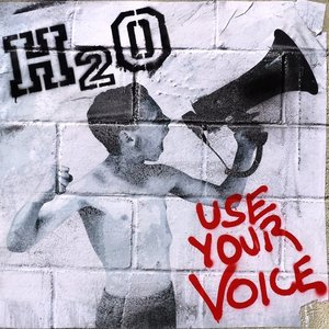 Use Your Voice (Limited Vinyl)
