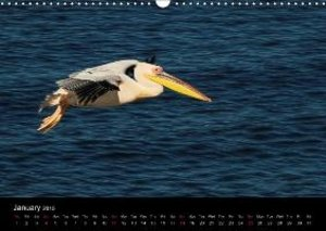 African Birds (UK-Version) (Wall Calendar 2015 DIN A3 Landscape)