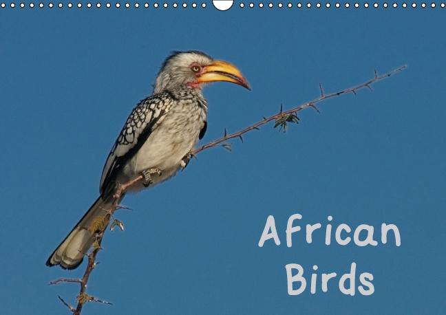 African Birds (UK-Version) (Wall Calendar 2015 DIN A3 Landscape) - zum Schließen ins Bild klicken
