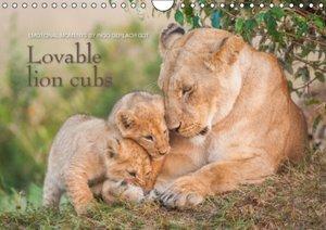 Emotional moments: Lovable lion cubs UK-Version (Wall Calendar 2