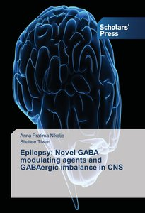 Epilepsy: Novel GABA modulating agents and GABAergic imbalance i