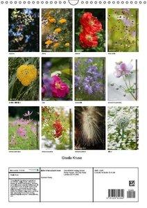 Summer Poetry (Wall Calendar 2015 DIN A3 Portrait)