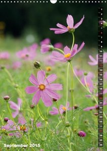 Summer Poetry (Wall Calendar 2015 DIN A3 Portrait)