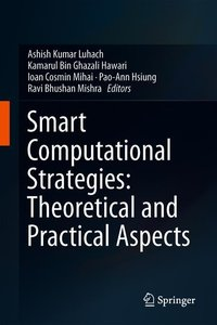 Smart Computational Strategies: Theoretical and Practical Aspect