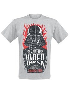 Darth Vader-Galactic Tour (Shirt L/Grey)