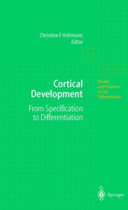 Cortical Development