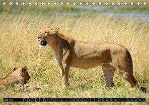 Faszination Botswana
