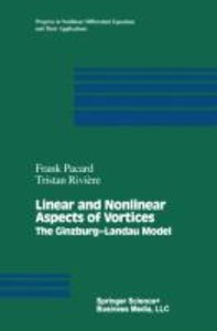 Linear and Nonlinear Aspects of Vortices