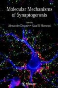 Molecular Mechanisms of Synaptogenesis