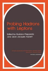Probing Hadrons with Leptons