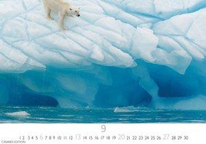 Arctic Landscape S 2020