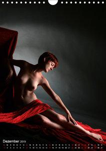 Zauberhaftes Rot (Wandkalender 2019 DIN A4 hoch)
