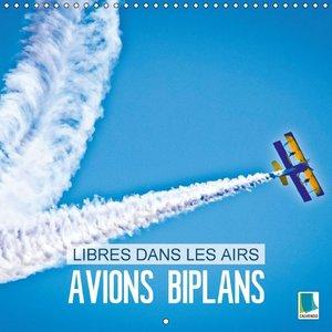 Avions biplans : libres dans les airs (Calendrier mural 2015 300