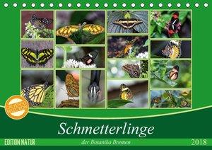 Schmetterlinge der Botanika Bremen