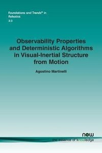 Observabilty properties and deterministic algorithms in visual-i