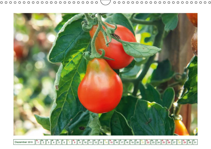 Appetitliche Tomaten - von sonnengelb bis purpurrot (Wandkalende - zum Schließen ins Bild klicken