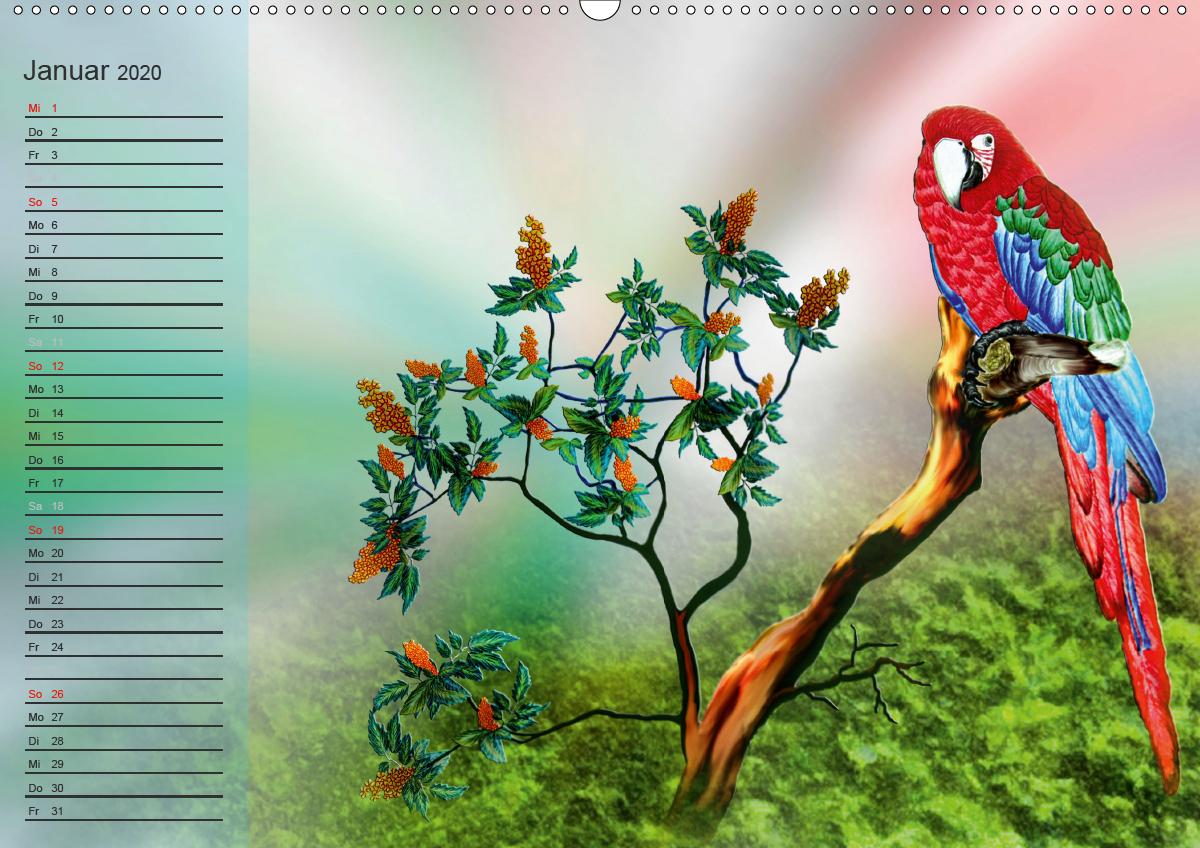 Papageien Zeichnungen - zum Schließen ins Bild klicken