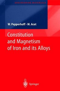 Constitution and Magnetism of Iron and its Alloys