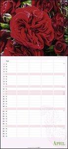 Rosentage Familienplaner Kalender 2020