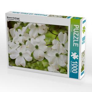 Blumen-Hartriegel 1000 Teile Puzzle quer