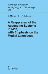 A Reappraisal of the Ascending Systems in Man, with Emphasis on