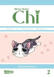 Kleine Katze Chi 02