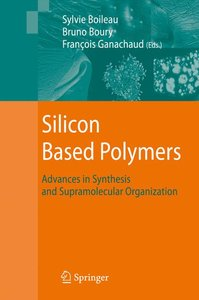 Silicon Based Polymers