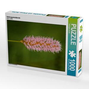 Schlangenknöterich 1000 Teile Puzzle hoch