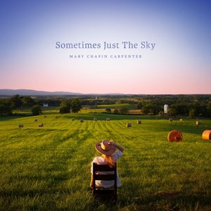 Sometimes Just the Sky (2LP)