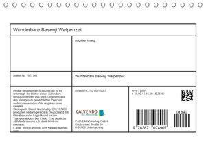 Wunderbare Basenji Welpenzeit (Tischkalender 2020 DIN A5 quer)