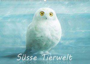 Süsse Tierwelt / (AT-Version) / Geburtstagskalender