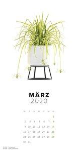 Bitte nicht giessen 2020 - Bildkalender (33 x 64) - Blumen - Pfl