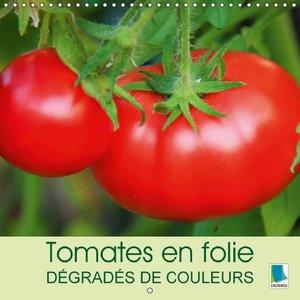Tomates en folie - dégradés de couleurs (Calendrier mural 2015 3
