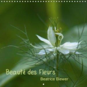 Beauté des Fleurs (Calendrier mural 2015 300 × 300 mm Square)