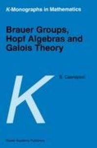 Brauer Groups, Hopf Algebras and Galois Theory