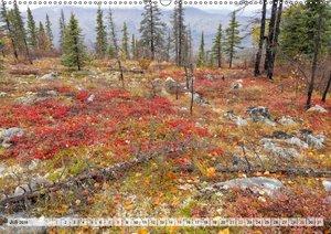 Alaska - der kurze Herbst